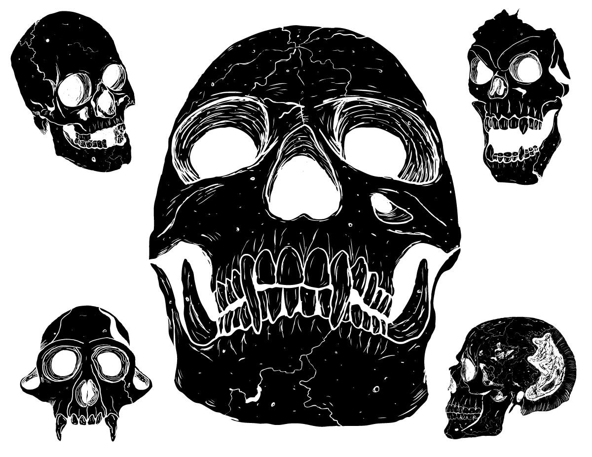 skulls vector pack graphicskeeper com rh graphicskeeper com vector skulls images skulls vector art